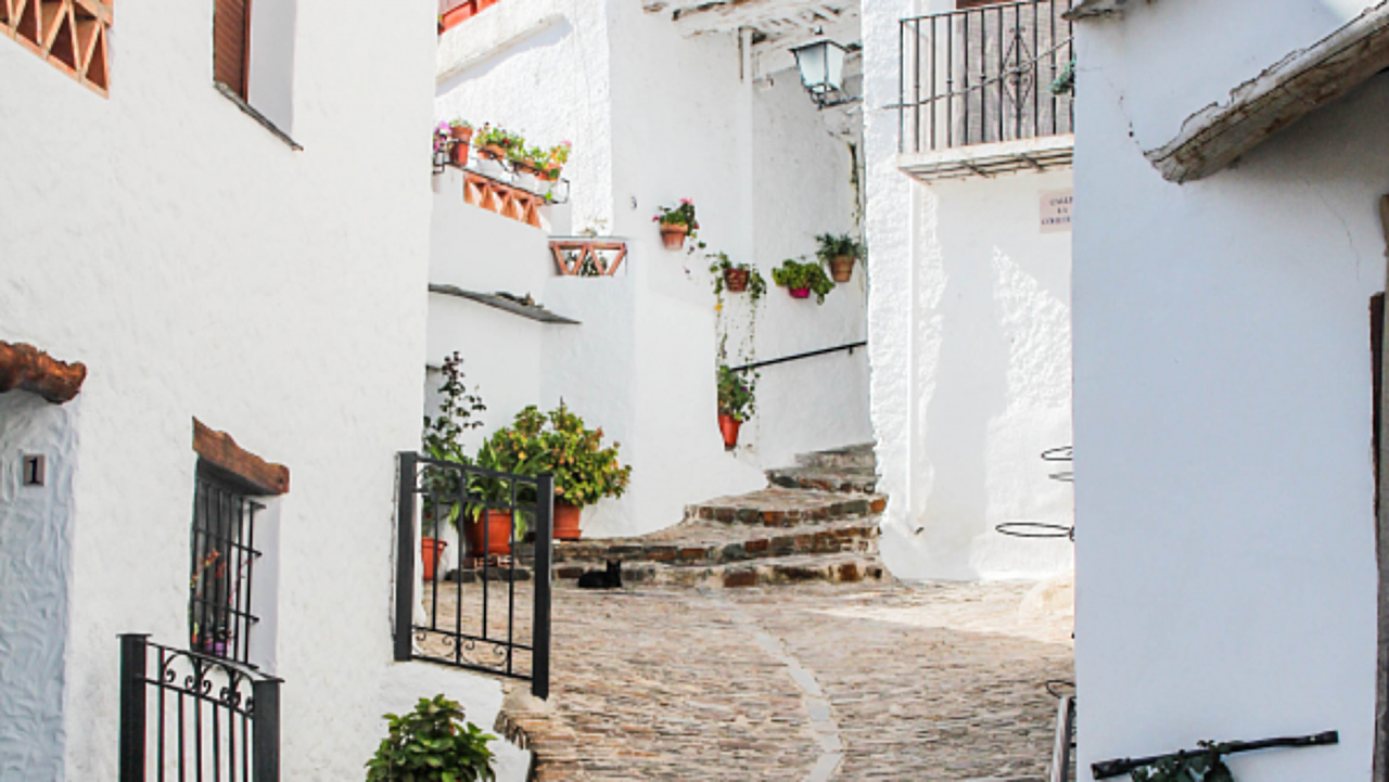 Alpujarra, Granada, rural, different, special, charm, extraordinary, picturesque, green sheep, apartments, house,